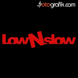 Low N Slow Sticker