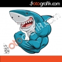 Köpek Balığı Renkli Oto Sticker